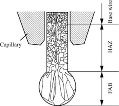 Ball Bond Grain Structure